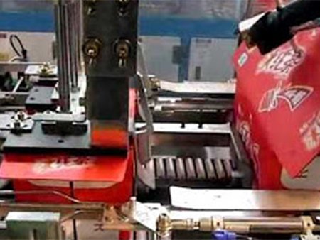 Wrap-around Case Packing Machine